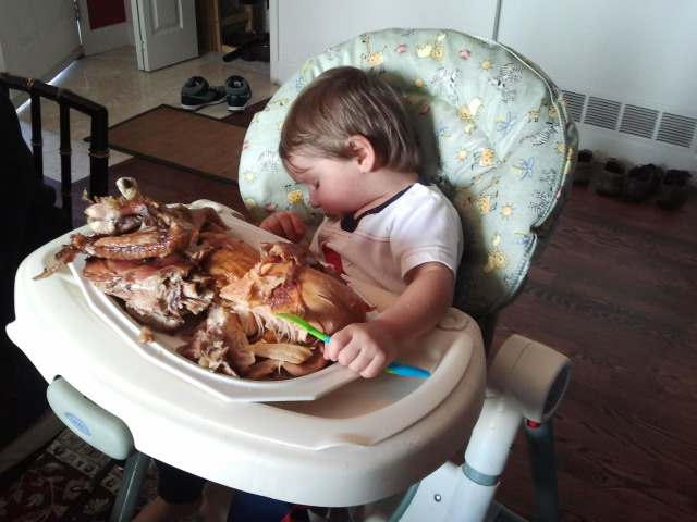�i ate too much turkey���� dailyoddsandends
