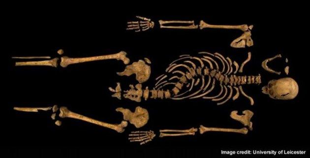 Richard-III-skull-Leicester4-04022013-jpg_104507