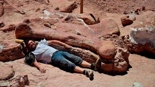 HT_MEF_argentina_dinosaur_fossil_2_jt_140517_16x9_992