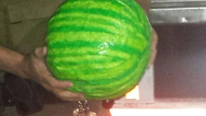 watermelons_pot2